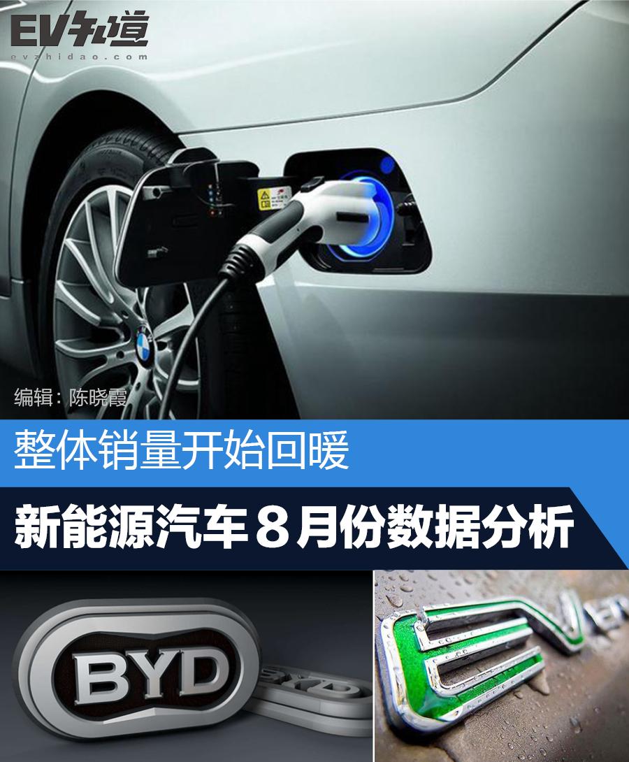 整体销量开始回暖 新能源乘用车8月数据分析